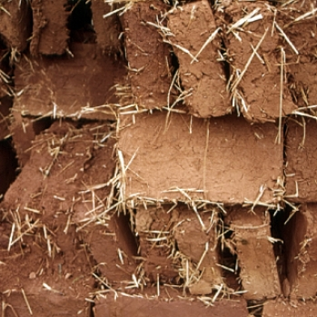 Adobe bricks air drying