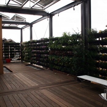 ...with living walls planted appropriately: edibles for the kitchen, thick foliage for the bedroom, etc.