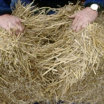 Making a half bale